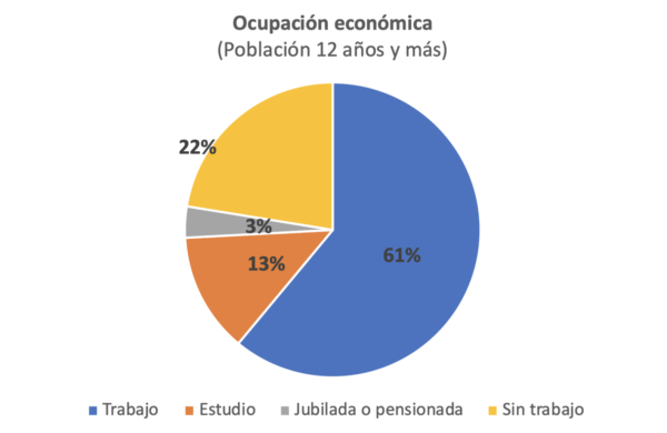 Figura 1: Principal ocupación económica de la población mayor de 12 años